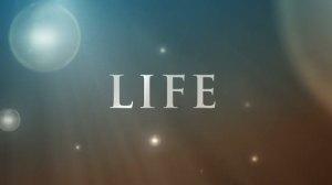 60_life_inspiration